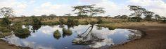 2009 Tanzania - Kenia - Zanzibar