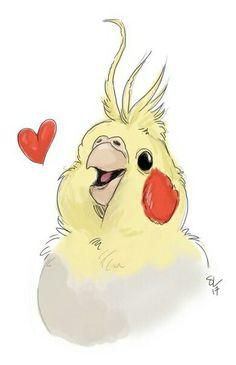 Calopsita Baby Love Part 2 - New Ideas Cute Animal Drawings, Animal Sketches, Bird Drawings, Cute Drawings, Drawing Sketches, Funny Birds, Cute Birds, Parrot Drawing, Cockatiel