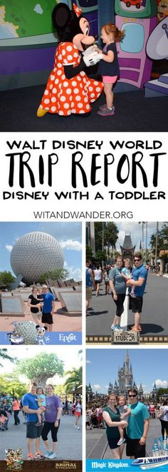 Walt Disney World 2016 - Our Disney World Trip Report with a Toddler - discover our entire trip broken down into bite size pieces including where we stayed, what we did, and where we ate at Walt Disney World Resort in Florida | Wit & Wander