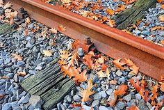 Hadden stoomtreinen ook last van bladeren op het spoor?