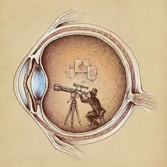 What we see depends mainly on what we look for. #perspective