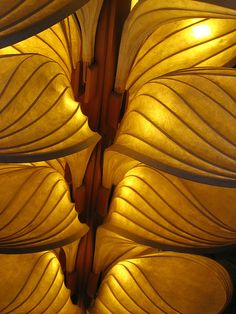 I mellow yellow l Shades Of Gold, Shades Of Yellow, Yellow And Brown, Patterns In Nature, Textures Patterns, Color Patterns, Natural Forms, Natural Texture, Scenery Photography