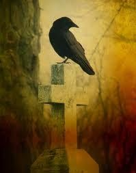 "A Crow once told me that: ""If you're wise you'll stay on the path, but don't listen to me I'm simply a Crow"