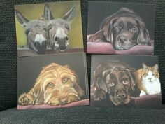 Postcards prints from my pastel drawings. Hessel & Hannes, Millie, Olav and donkeys