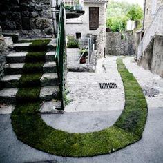 The Green Carpet !