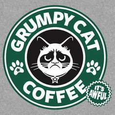 We could go for a nice cup of Grumpy Cat Coffee today at the shop!