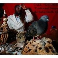 Best & Affordable Psychic / Sangoma / Spiritual Traditional Healer / ,27619095133 / Spells Caster / Herbalist In London UK USA South Africa Jhb en Servicios en Wiccan, Vancouver, Lost Love Spells, Love Spell Caster, Healer, Spirituality, Animals, Animales, Animaux