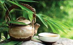 Boli de Ficat – 10 Tratamente Naturiste Herbal Medicine, Natural Remedies, Herbalism, Tea Pots, Nature, Medicine, Naturaleza, Tea Pot, Natural Home Remedies