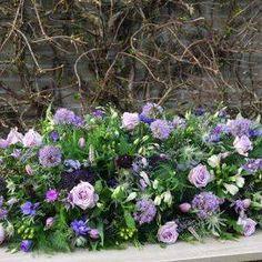 kistbedekking in paarstinten met allium, tulp en roos