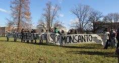 Busses of activists from more than a dozen states brought demonstrators to Washington D.C. for a rally against Monsanto outside the capitol Wednesday.