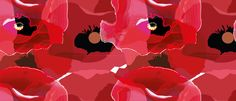 This wallpaper experiment I decided to keep the design with red poppies. The poppy drawings that I had used for this experiment was flat colour drawing, the glow effect drawing and the gradient mesh drawing. I think this concept went well because I like how the poppies collage with each other.