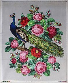 Antique Large Hand Painted Berlin Woolwork Embroidery Pattern Peacock Roses | eBay