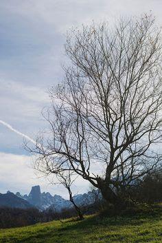 Jordi Busqué: Las montañas mágicas. Viaje a Asturias.