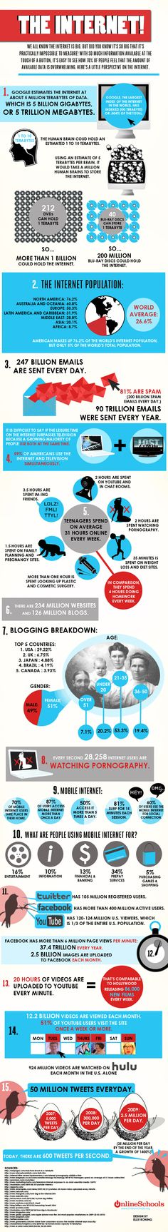 Internet Infographic. Stats for just about all the interwebs goings-on.