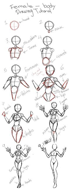 Drawing tutorial for female body - drawing the female human . - Tutorial for drawing female body – drawing the female human body Tutorial for drawing female body - Drawing Female Body, Drawing Body Poses, Drawing Reference Poses, Drawing Tips, Drawing Drawing, Drawing Techniques, Body Base Drawing, Drawing Ideas, Drawing Faces