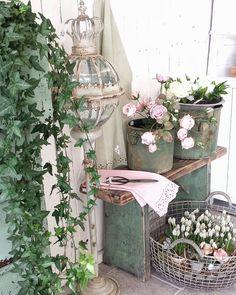 Kvällsbild från butiken #levvackert Blommiga vårliga härliga inredning. I butiken har vi många glada och trevliga kunder som fröjdas och blir inspirerade hos oss. Välkommen du med till Kristinehamns inspirationsbutik ,öppet Lördag och Söndag.