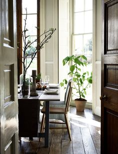 What house plants can do for your home Neptune Kitchen, What House, Palette, Interiors Magazine, Eames Chairs, Open Plan Kitchen, Elle Decor, House Plants, Bookshelves
