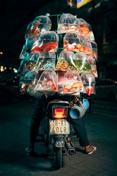 Vietnamese Fish, Andre Kertesz, Edward Weston, Martin Parr, Pet Fish, Street Portrait, Helmut Newton, Annie Leibovitz, Pose For The Camera