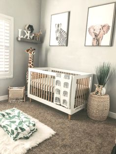 Unusual Article Uncovers the Deceptive Practices of Tropical Nursery Neutral - pecansthomedecor. Unusual Article Uncovers the Deceptive Practices of Tropical Nursery Neutral – pecansthomedeco Safari Theme Nursery, Baby Nursery Decor, Baby Decor, Jungle Safari, Jungle Theme Nursery, Project Nursery, Nursery Room Ideas, Baby Animal Nursery, Nursery Twins