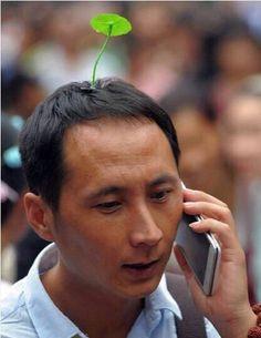 あっくん★の美容ブログ(大阪 旭区 千林 守口の美容室) 【草生えるw】中国で流行している髪飾りが衝撃的すぎる件