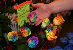rainbow roses sale