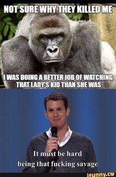 savage, gorilla, zoo, cincinnatizoo, harambe