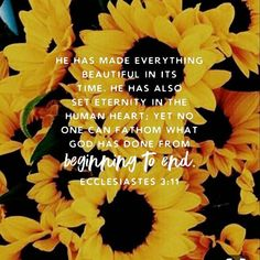 Ecclesiastes with sunflowers Bible Verses Quotes, Bible Scriptures, Faith Quotes, Biblical Verses, Sad Quotes, Soli Deo Gloria, Give Me Jesus, Favorite Bible Verses, Wise Words