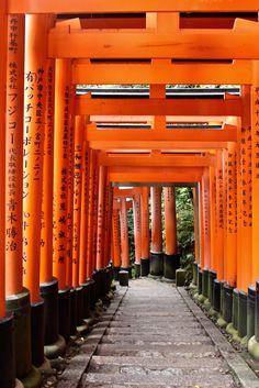 Kyoto - und was die Stadt so besonders macht. http://www.rapunzel-will-raus.ch/kyoto-japan/