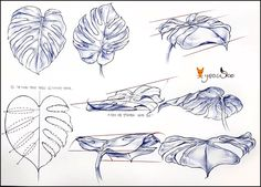 Flower Drawing Tutorials, Basic Drawing, Drawing Techniques, Line Art, Drawings, Floral, Study, Animals, Image