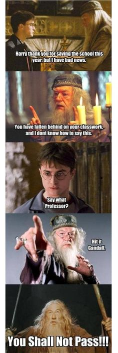 LOTR/Harry Potter  (No matter how hard I try, I always laugh when I see this.)