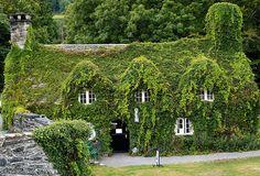 Tea Room in the Village of Lanrwst, North Wales, UK