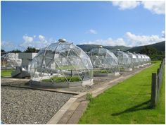 Solardomes at the Air Pollution Facility, CEH's Bangor site