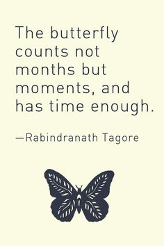 The butterfly counts not months but moments, and has time enough. — Rabindrana… The butterfly counts not months but moments, and has time enough. Rain Quotes, Poem Quotes, Motivational Quotes, Inspirational Quotes, Qoutes, Weird Words, Some Words, Tagore Quotes, Butterfly Quotes
