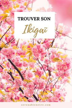 Trouver sa raison d'être, son pourquoi avec la méthode ikigaï tout droit arrivé du Japon #missiondevie #raisondetre#ikigai #serenabienetre Miracle Morning, Positive Attitude, Yoga Meditation, Positive Affirmations, Self Improvement, Personal Development, How To Make Money, Spirituality, Positivity