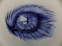 Cat Eye Drawing With Ballpoint Pen