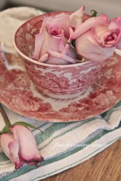 From French Country...red and white transferware teacup