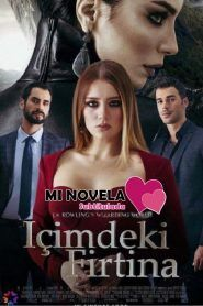 Icimdeki Firtina Drama, Turkish Beauty, Tv Series, Movies, Films, Feelings, Movie Posters, Play, Watch