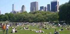[VÍDEOS] Pequeña explosión sacude Central Park en Nueva York...