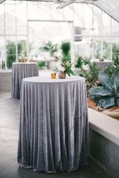 Silver Sage Wedding Ideas ★ silver sage wedding round tall table with velvet grey tablecloth emily ann hughes photography Cocktail Table Decor, Cocktail Tables, Gray Weddings, Southern Weddings, Greenhouse Wedding, Garden Wedding, Greenhouse Ideas, Salas Lounge, Gray Wedding Colors