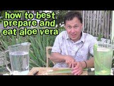 ▶ How to Best Prepare and Eat Aloe Vera & Aloe FAQ - YouTube