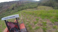 Bastidores do programa de reflorestamento do Grupo Petrópolis - Projeto AMA