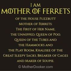 """43 Likes, 2 Comments - Mink (@dominique_dolittle) on Instagram: """"Lol #gameofthrones #ferrets #motherofferrets #got"""""""