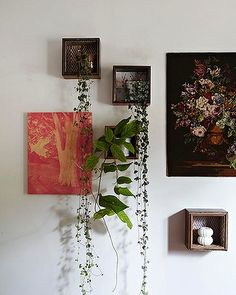 cool way to mix plants with art..hoya plant at the bottom, has beautiful flower blooms