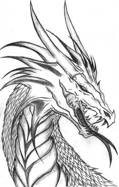 Free Printable Dragon Coloring Pages . 30 Free Printable Dragon Coloring Pages . Free Printable Dragon Coloring Pages for Kids Cool Dragon Drawings, Dragon Sketch, Dragon Artwork, Easy Drawings, Pencil Drawings, Dragon Head Drawing, People Drawings, Drawings Of Dragons, Dragon Head Tattoo