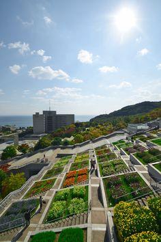 Flower garden of Awaji Yumebutai
