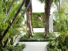Tropical garden bliss!