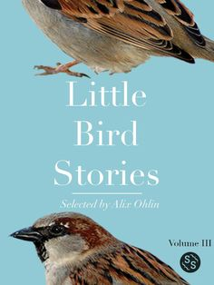 Announcing the winner of the 2013 Little Bird Writing Contest!