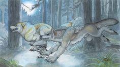 goldenwolf