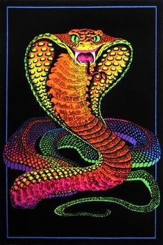 MEDUSA T-SHIRT Gorgone Schlangen Schlangenkopf Snakes Perseus Mythologie Greece