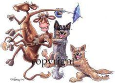 happy birthday australian cattle dog - Поиск в Google